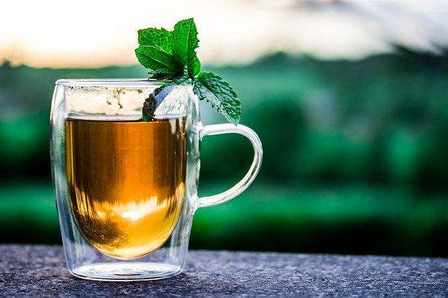 grávida pode tomar chá de hortelã